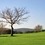 Photos – Kruger park lodge